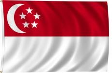 Флаг Сингапура фото