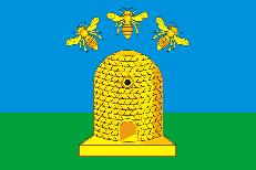 Двухсторонний флаг Тамбова фото