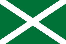 Двухсторонний флаг ФТС России фото
