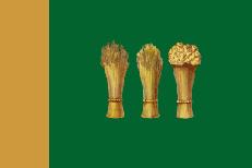 Флаг Пензы фото