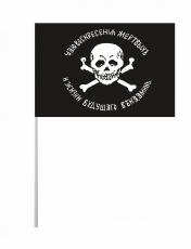 Флажок на палочке «Флаг генерала Бакланова» фото
