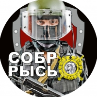 "Наклейка СОБР ""Рысь"" Боец"