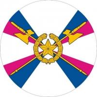 Наклейка «Войска тыла»