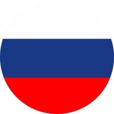Наклейка «Россия триколор» фото