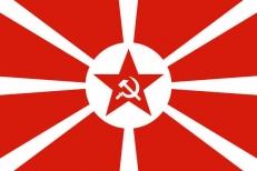"""Флаг """"ВМФ СССР"""" 1923г. фото"""