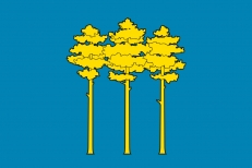 Флаг Димитровграда фото
