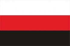 Флаг Эрзя фото