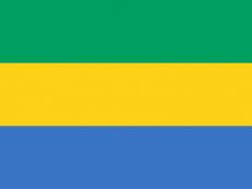 Флаг Габона фото