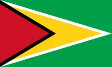 Флаг Гайаны фото