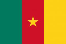 Флаг Камеруна фото