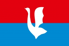 Флаг Гусь-Хрустального фото