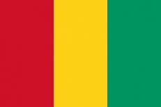 Флаг Гвинеи фото
