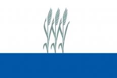 Флаг Камышина фото