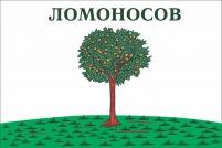 Флаг г.Ломоносов Ленинградской области