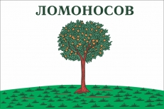 Флаг г.Ломоносов Ленинградской области фото