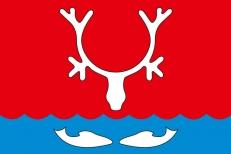 Флаг Нарьян-Мара фото