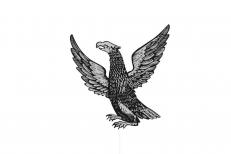 Флаг Нерчинска фото