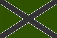 """Флаг """"Новороссия"""" полевой фото"""