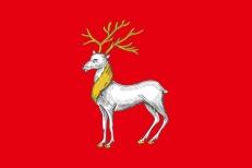 Флаг Ростова фото