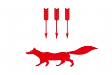 Флаг Саранска фото