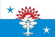 Флаг Серова фото