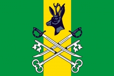 Флаг Шилкинского района фото