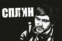 "Флаг ""Сплин"" А.Васильев"