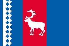 Флаг Тазовского района фото