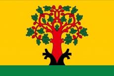 Флаг Цивильска фото