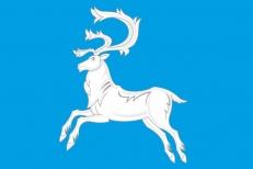 Флаг Вилюйска фото