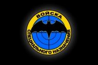 """Флаг """"Войска Спецназа"""""""