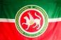 Флаг Республики Татарстан с гербом фотография