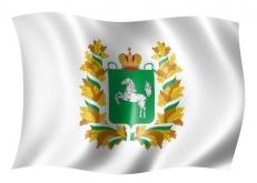 Флаг Томской области фото