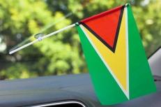 Флажок Гайаны в машину фото