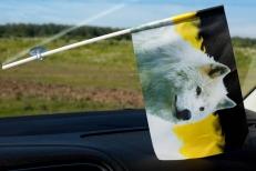 Флажок имперский в машину «Волк» фото