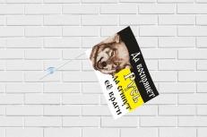 Флажок в машину с присоской Имперский «Да воспрянет Русь» фото