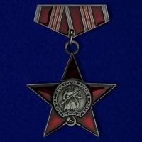 """Фрачник ордена """"100 лет Советской армии и флота"""""""
