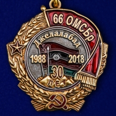 """Медаль """"30 лет вывода из Афганистана 66 ОМСБр"""" фото"""