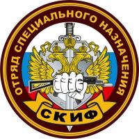 Наклейка Спецназ ВВ Скиф