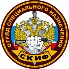 Наклейка Спецназ ВВ Скиф фото