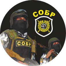 Наклейка «СОБР-МВД» фото