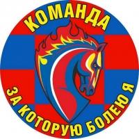 Наклейка для болельщиков «ФК ЦСКА» Команда
