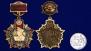Знак отличник погранвойск на 100 лет ПВ